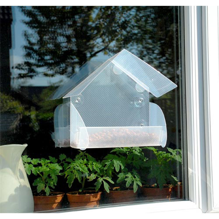 Window Bird Feeder - get up close to nature